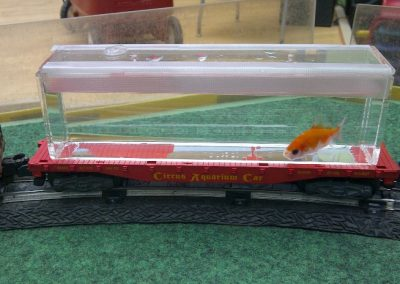 Aquarium_Car_w_fish